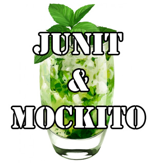 JUnit & Mockito tutorial with a code examples
