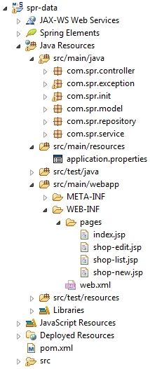 spring-data-jpa-project-structure